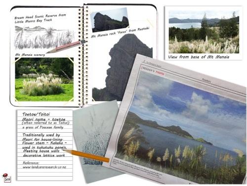 ScenicNorthland-NZ-SusanCharlotteGraphics