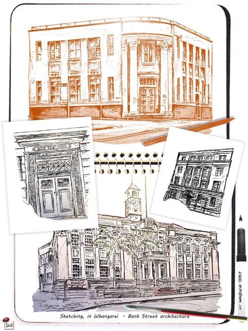 sketching-whangareinz-susancharlottegraphics